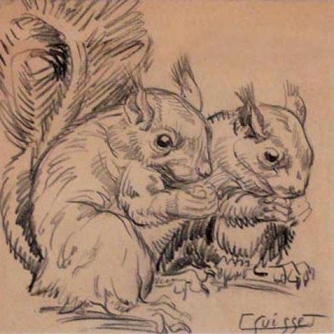 Écureuils.